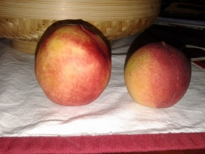 Tajik Peaches