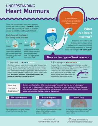 Heart Murmur Infographic